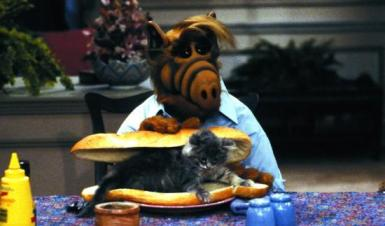 alf-trying-eat-cat-